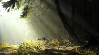 Sun Of The Sleepless - Nebelmond