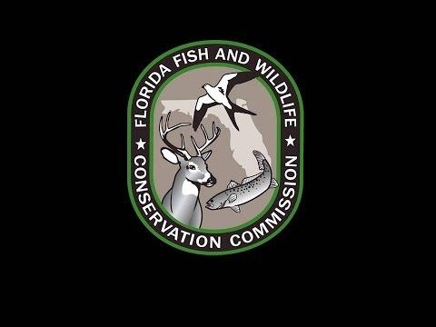 Commission Meeting 2-4-2015 Part 2 Jacksonville