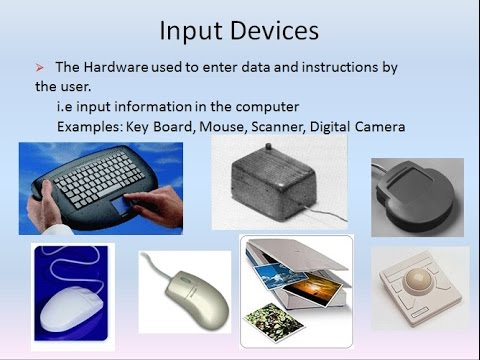 essay on input devices of computer Get access to input and output devices essays only anti essays offers essay examples to help computer input and output devices have undergone remarkable.