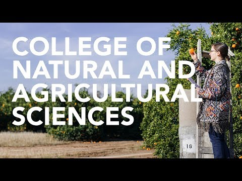 College of Natural and Agricultural Sciences | Majors