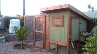 How To Build A Backyard Urban Chicken Coop