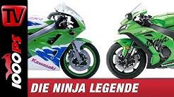 Kawasaki Zxr 400 Blinker
