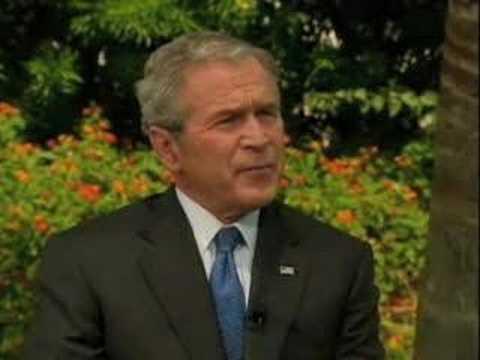 Bush on Bee Hives