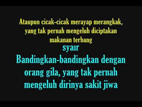 BILLFOLD  - Sebenernya Fana  With Lyrics