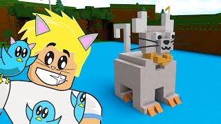 MY PURRRFECT KITTY BOAT / ROBLOX BUILD EIN BOAT TO TREASURE GAME