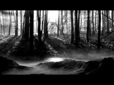 Radio Werewolf - The Gulf of Black Grief