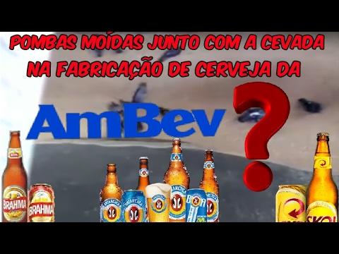 POMBOS sendo MOÍDOS com CEVADA na fabricação de cervejas da AMBEV?