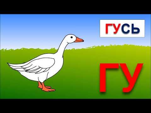 игра «Крокодил»: правила :: слова для игры «Крокодил