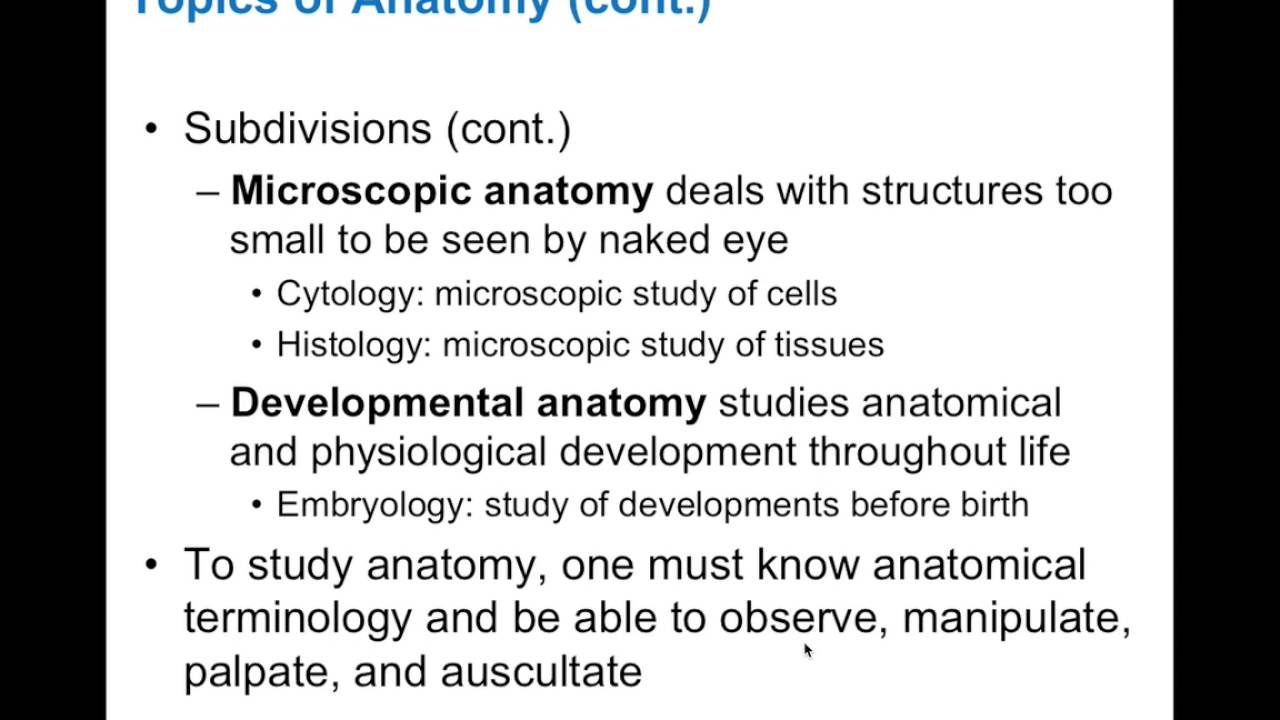 Chapter 1.1 Form and Function of Anatomy & Physiology BIO201 - YouTube