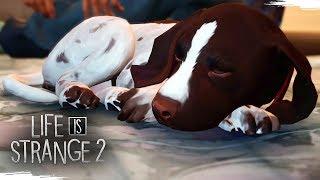 LIFE IS STRANGE 2 5 Novos Desafios Gameplay Em Português PT BR