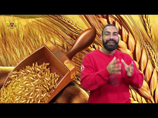 Royal Academy| Folk Revolution|Bhangra| channel Punjabi| Episode 1 - part -1