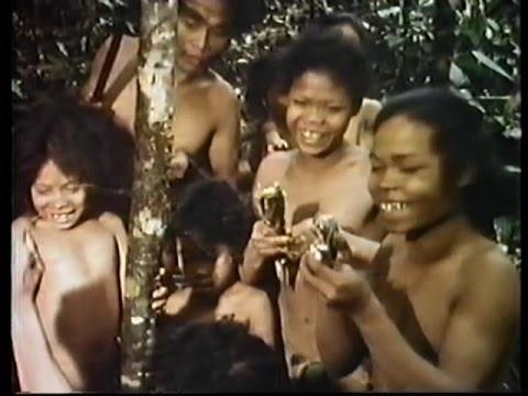 Nova: The Lost Tribe 1993 5 of 6