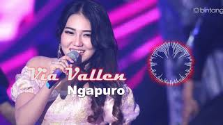 Gambar cover Via Vallen - Sepuro (Video By Ds)