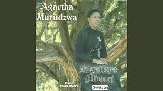 Gambar cover Ndimi mwari