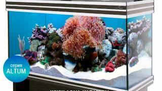 Красивые и современные аквариумы новой серии(Аквариумы в Казани от интернет-магазина