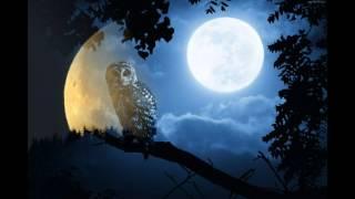 Ритуал в полнолуние на деньги богатство и Изобилие Selena Moon Богиня Луны