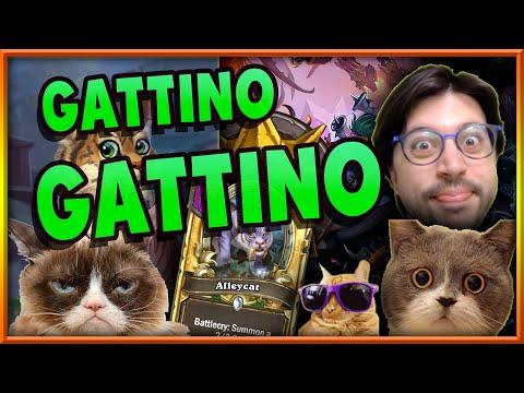 LA VERA BUILD GATTINO! | Hearthstone Battlegrounds Ita