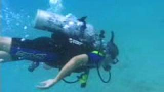 Diving In St. Croix