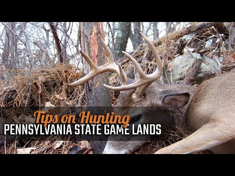 Tips on Hunting Pennsylvania State Game Lands
