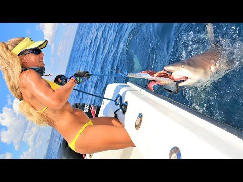 Teasing MAN-EATING Sharks With GIANT BAITS? Don't Try This At Home!
