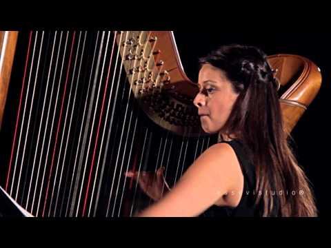 ARPA E VIOLINO | Faucitano/Cernuto - Realizzazione video-  Essevistudio ®
