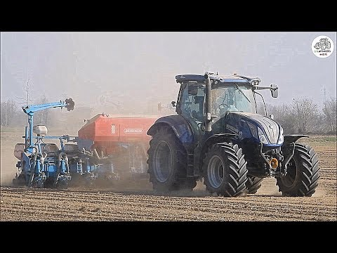 New Holland T6.175 BluePower + Monosem NX M - Seeding Corn 2019