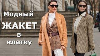 Модный женский жакет в клетку Стильный образ С чем носить пиджак