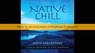 David Arkenstone   Native Chill 2014