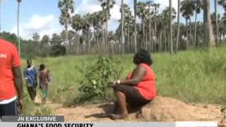 GHANA'S FOOD SECURITY - JOY NEWS EXCLUSIVE (5-11-13)