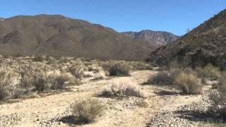 Borrego Springs: Butler hidden springs rockhouse loop
