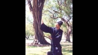 Wudang Daoist Five ( 5 ) Elements QIGONG Music
