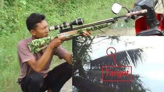 Hunting dan Berburu Tekukur dengan Sharp Tiger Part 4