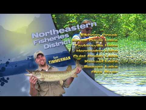 Fishing Report - October 16th, 2019