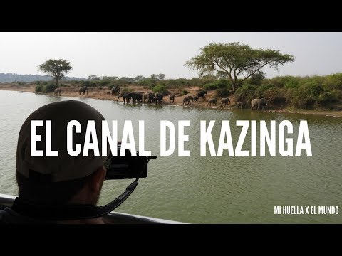 UGANDA #4 SAFARI POR EL CANAL DE KAZINGA [Mi Huella x el mundo]