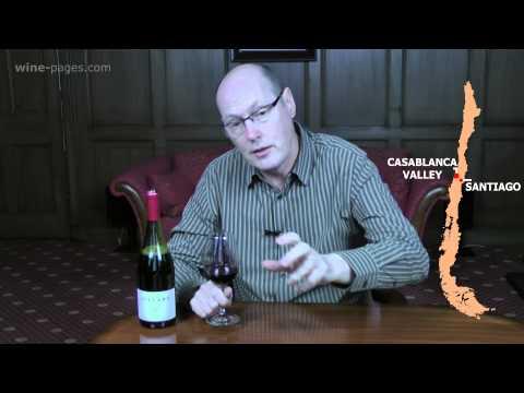 Villard, Expresion Reserve Syrah 2013, Chile, wine review
