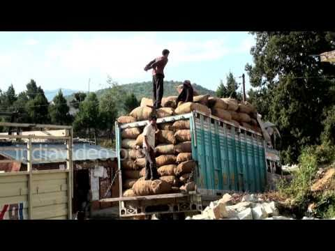 Loading workers in Lohajung in Chamoli