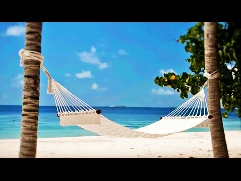 Virtual Vacation Tropical Island Tour softer Ambiance 30 min. - Realexcel Epilepsy Portal Sanctuary