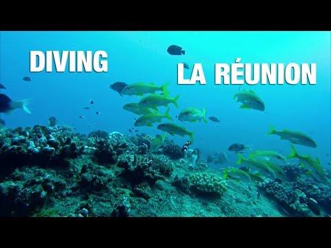 plongée/-diving/-tauchen-|-la-réunion