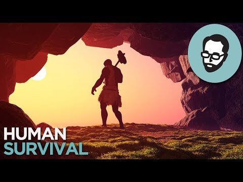 Did Humans Almost Go Extinct? | Random Thursday