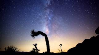 Joshua Tree during the 2013 Perseid Meteor Shower Feat. 'Red Letter' by The American Dollar
