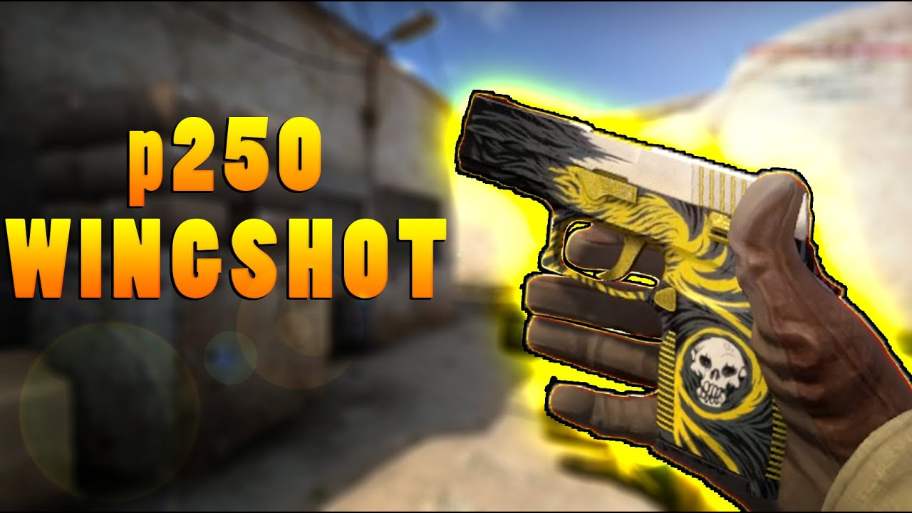CS:GO - P250 | Wingshot Showcase+Gameplay HD