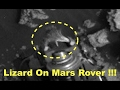 Lizard Found On Mars Rover In Newest NASA Photos! March 2017, UFO Sighting News.