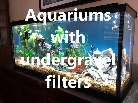 Undergravel Filters In My Aquariums