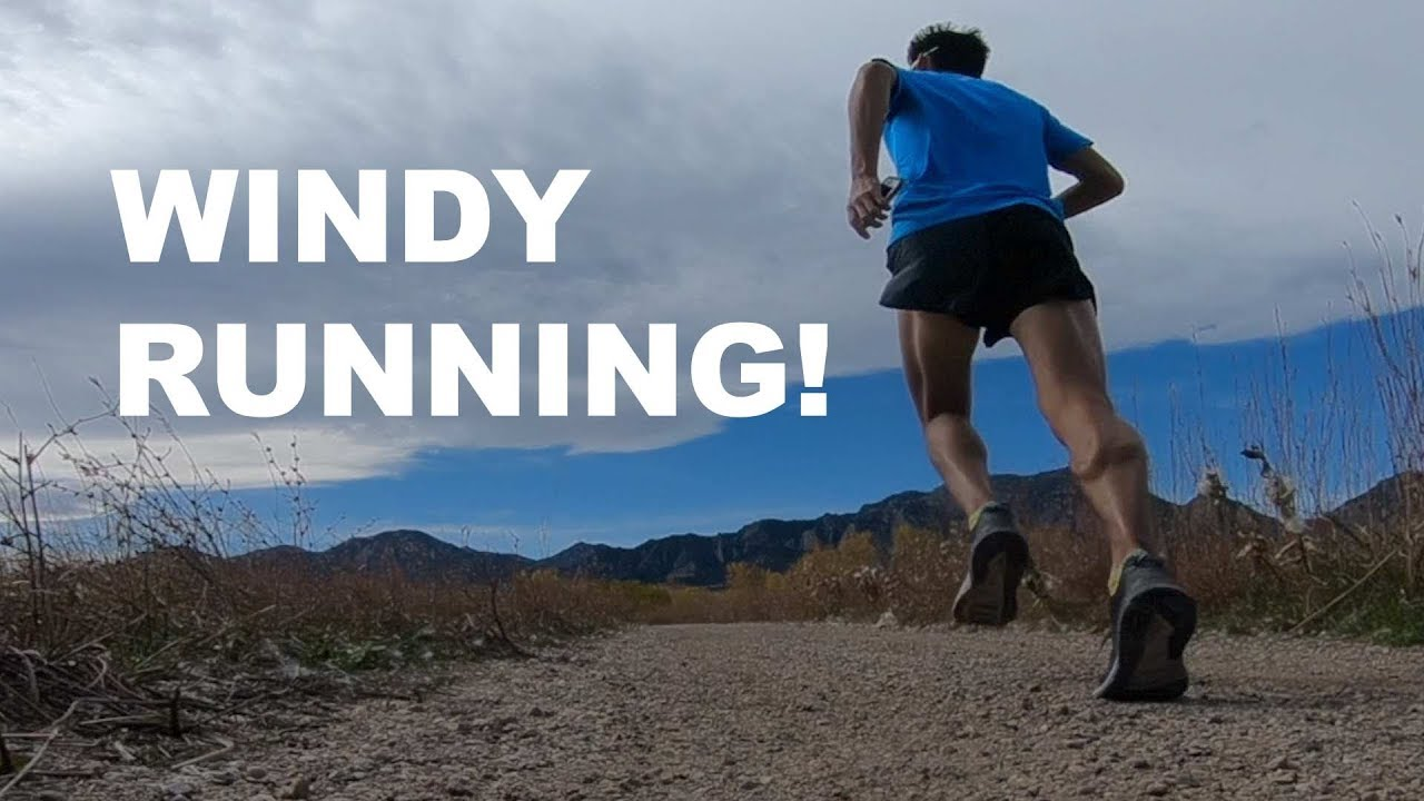 Image result for running in the wind