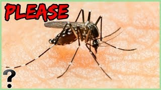 what-if-mosquitoes-went-extinct