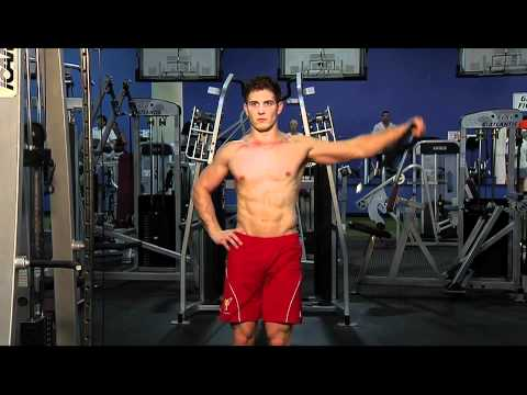 Image result for Standing Low-Pulley Deltoid Raise