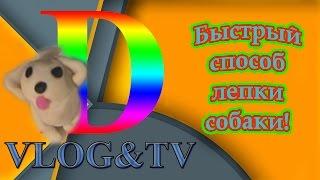 Собака быстрый способ лепки!!! Darina Vlog & TV