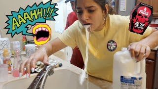 WE TRIED THE HOTTEST CHIP IN THE WORLD!!! HILARIOUS!!! .VLOG#264