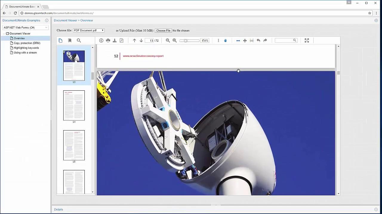 ASP NET Document Viewer