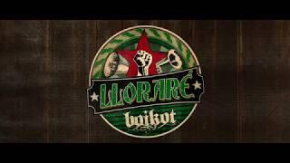 "BOIKOT ""Lloraré"" (Teaser)"